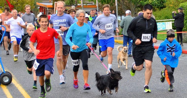 PAWZ 5K Walk/Run (Sponsorship)